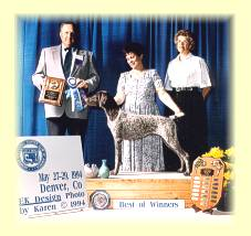 Leesy (far right) and Sharon holding April being awarded Best of Winners from the Bred by Exhibitors class, at the 1994 GSPCA National Specialty Show in Denver Colorado