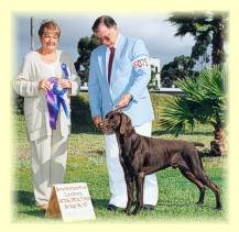 Steve and Marco being awarded Winners Dog at the 1997 GSP National Specialty Show in San Diego