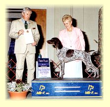 Monroe wins Best Of Sweepstakes at the GSPCA National Specialty, 2001.