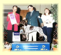 Monroe takes Winners Bitch at the GSPCA National Specialty, 2001.